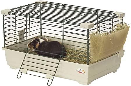 Gabbia per conigli nani
