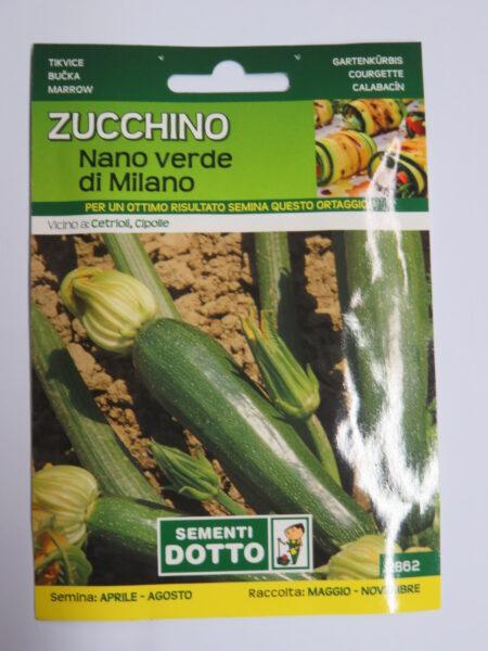 Zucchino verde di Milano